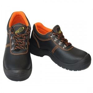 Pantof de Protectie TR9 S1
